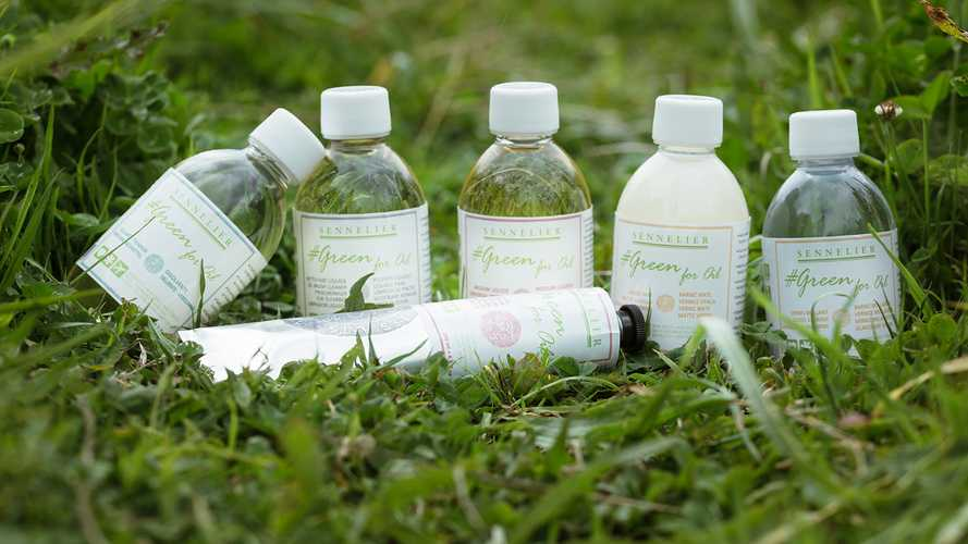 """Green for Oil"", aditivos ecológicos para pintura al óleo 0"